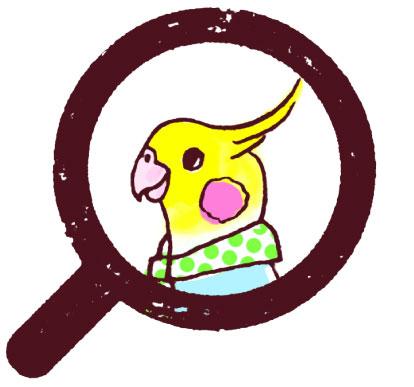kkt_profile_Abe